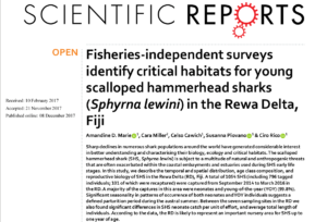 Fisheries-independent surveys identify critical habitats for young scalloped hammerhead sharks (Sphyrna lewini) in the Rewa Delta, Fiji