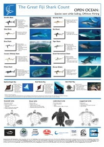 Fiji Shark Count Open Ocean & Offshore Poster