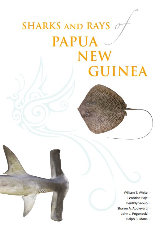 Sharks and Rays of PNG